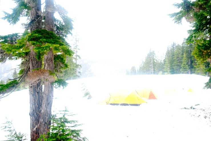 Snow Camp at Stevens Pass